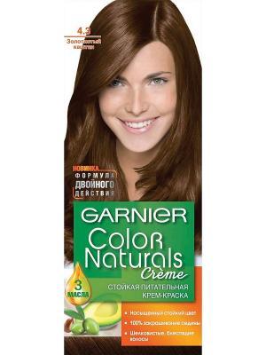 Стойкая питательная крем-краска для волос Color Naturals, оттенок 4.3, Золотистый каштан Garnier. Цвет: темно-коричневый
