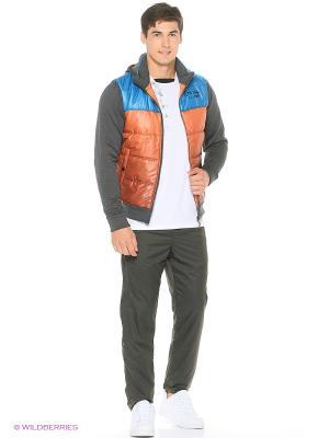 Куртка Stayer. Цвет: темно-серый, темно-синий, терракотовый