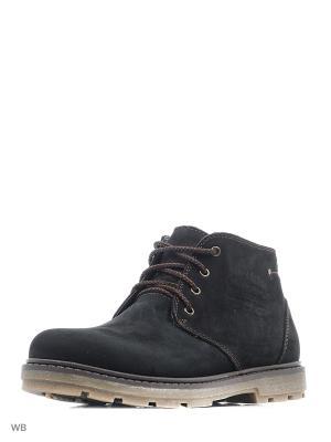 Ботинки ZET. Цвет: черный