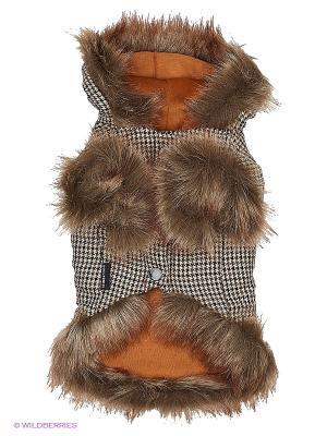 Куртка Doggy Dolly. Цвет: коричневый