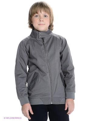 Куртка Appaman. Цвет: темно-серый