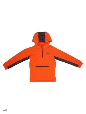 Худи Evo Savanna PUMA. Цвет: оранжевый, красный