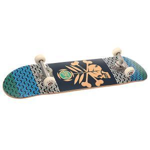 Скейтборд в сборе  Skull Season Blue 31.5 x 8 (20.3 см) Habitat. Цвет: мультиколор