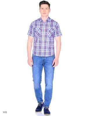 Рубашка YC COTTON. Цвет: голубой