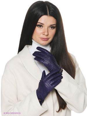 Перчатки женские Piero. Цвет: фиолетовый