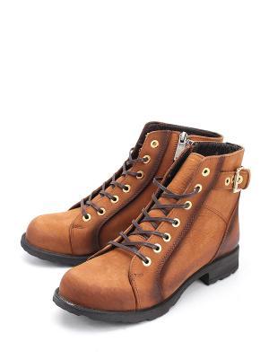 Ботинки Pera Donna. Цвет: коричневый