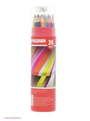 Набор карандашей в тубусе Action!. Цвет: красный