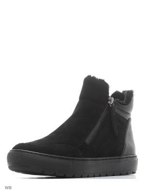 Ботинки GEOX. Цвет: черный, прозрачный