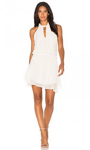 Мини юбка с рюшами bauti Karina Grimaldi. Цвет: белый