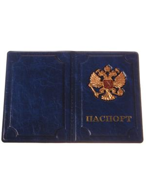 Обложка на паспорт с металлическим гербом, синий Радужки. Цвет: серый