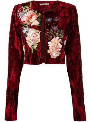 Бархатная куртка Desiree Alice Archer. Цвет: красный