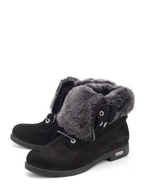 Ботинки SPECTRA. Цвет: черный