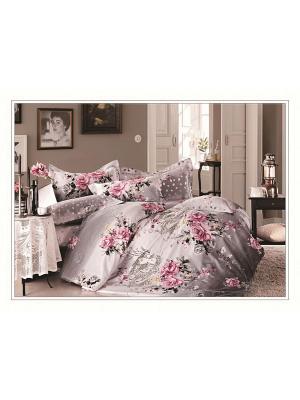 Комплект постельного белья ДУЭТ сатин, рисунок 684 LA NOCHE DEL AMOR. Цвет: серый