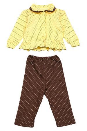 Комплект: кофта, штаны Веста. Цвет: желто-коричневый