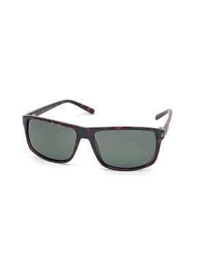 Солнцезащитные очки Legna. Цвет: зеленый, темно-коричневый