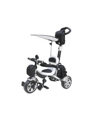Велосипед детский, 3х-колесный с тентом, черно-белый (MT-BCL0815003) Pit Stop. Цвет: черный