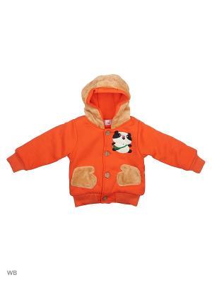 Куртка Happy Bear. Цвет: оранжевый