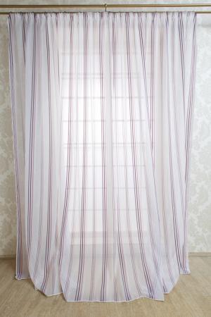 Тюль салли, 300х275 Daily by T. Цвет: фиолетовый