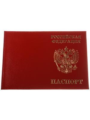 Обложка на паспорт, кожа, красный с золотым гербом Радужки. Цвет: красный