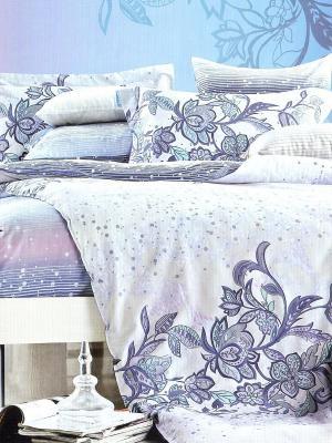 Комплект постельного белья, Селеста , Семейный KAZANOV.A.. Цвет: голубой