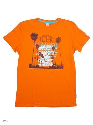 Футболка Icepeak. Цвет: оранжевый