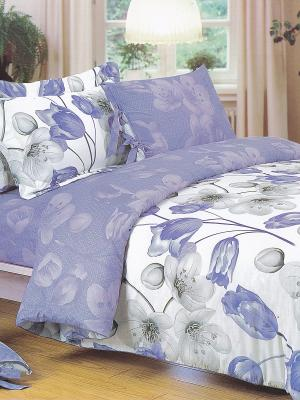 Комплект постельного белья 1,5 сп. сатин, рисунок 669 LA NOCHE DEL AMOR. Цвет: фиолетовый