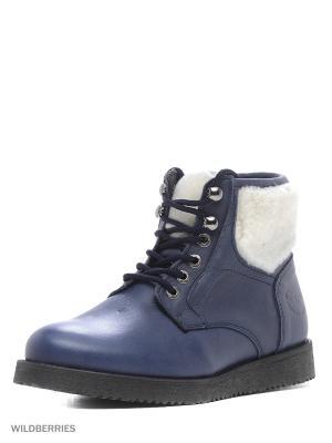 Ботинки GUT. Цвет: темно-синий
