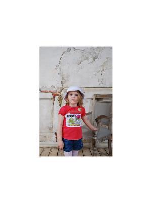 Джемпер с коротким рукавом ZEBRA KIDS. Цвет: малиновый