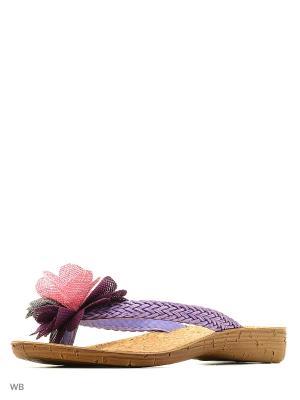Пантолеты Inblu. Цвет: фиолетовый