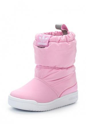 Дутики adidas Originals. Цвет: розовый