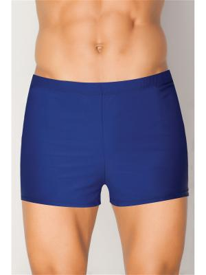 Плавки-шорты мужские TORRO. Цвет: темно-синий