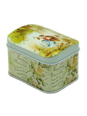 Коробка для безделушек и мелочей Влюбленные Magic Home. Цвет: зеленый