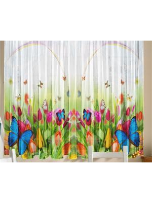 Фототюль для кухни Бабочки ZLATA KORUNKA. Цвет: белый