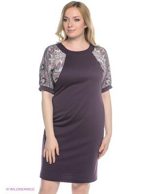 Платье Alego. Цвет: сливовый