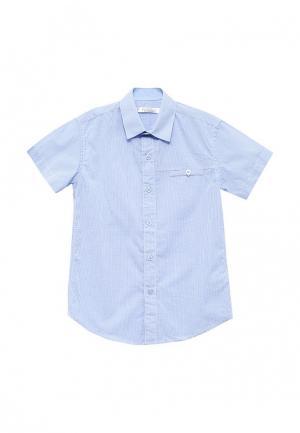 Рубашка Vitacci. Цвет: голубой