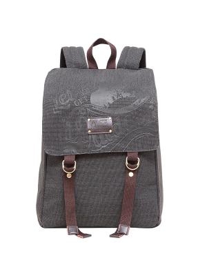 Рюкзак Grizzly. Цвет: серый, коричневый