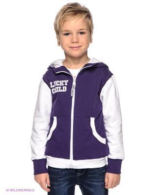 Толстовка Lucky Child. Цвет: фиолетовый