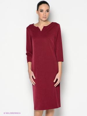 Платье PALLARI. Цвет: бордовый