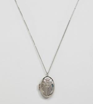 Sacred Hawk Ожерелье с подвеской-медальоном. Цвет: серебряный