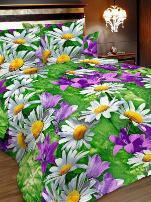 Комплект постельного белья, 1,5-сп, бязь, пододеяльник на молнии Letto. Цвет: зеленый, фиолетовый