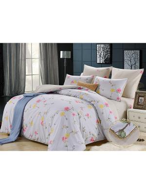 Комплект постельного белья, Молинаро, 2-х спальный KAZANOV.A.. Цвет: серый
