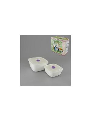 Набор емкостей для приготовления и хранения продуктов БЛАНКО GUMERTAL. Цвет: белый, фиолетовый