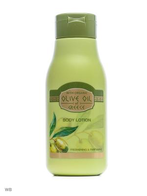 Лосьон для тела освежающий и парфюмированный Olive Oil of Greece 300 ml. Цвет: зеленый, оливковый, салатовый