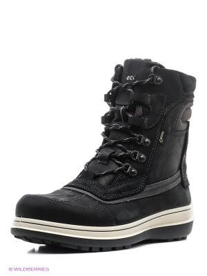 Ботинки ECCO. Цвет: черный, темно-серый