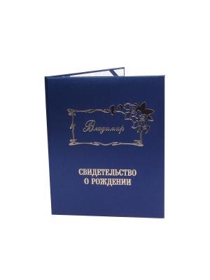Именная обложка для свидетельства о рождении Владимир Dream Service. Цвет: синий