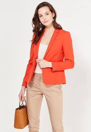 Пиджак Dorothy Perkins. Цвет: оранжевый