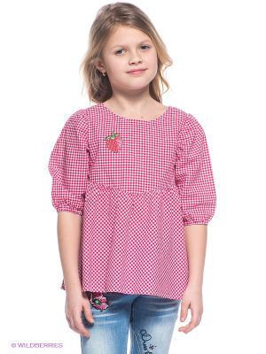 Блузка PELICAN. Цвет: розовый, белый