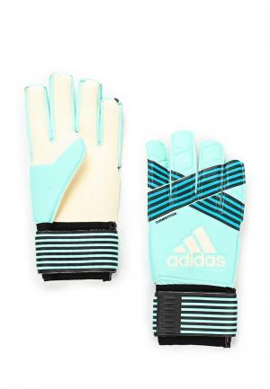 Перчатки вратарские adidas Performance. Цвет: бирюзовый