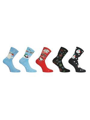 Носки 5 пар Master Socks. Цвет: голубой, красный, черный