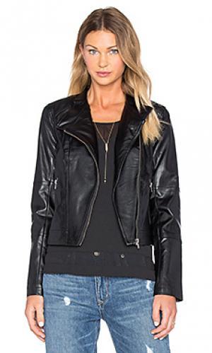 Куртка feeny BB Dakota. Цвет: черный